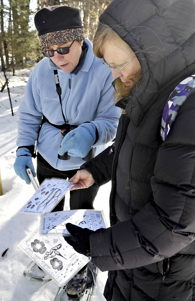 Leigh Hayes of Bridgton and Miriam Gibely of Sweden use charts to identify tracks found at the Holt Preserve in Bridgton.