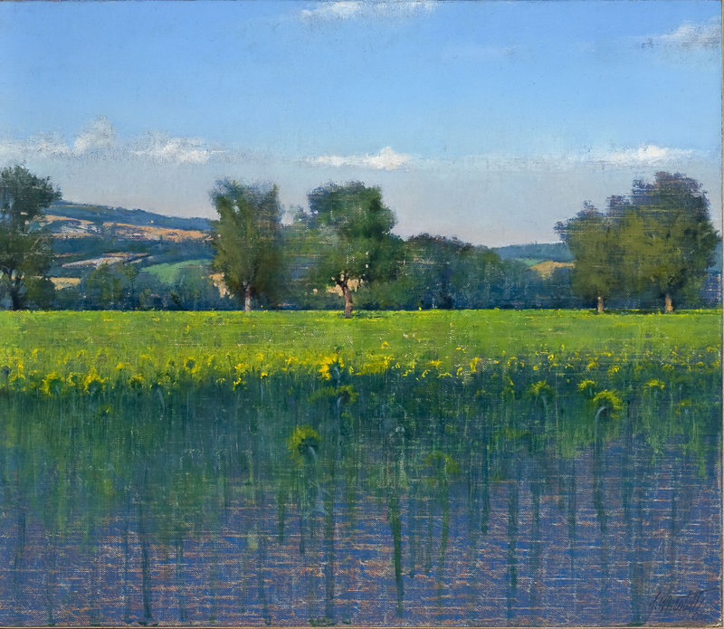 """""""Sunflower Field, Umbria,"""" 2005, oil on canvas, 10 by 11 inches"""