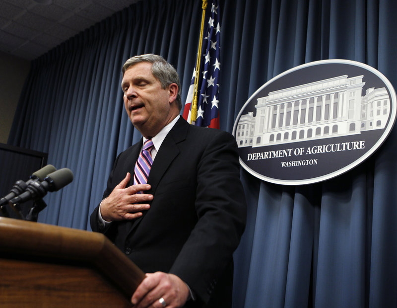 """Agriculture Secretary Tom Vilsack tells reporters that he acted in haste in firing Shirley Sherrod, a black U.S. Agriculture Department official, after it appeared she had made racist remarks in a heavily edited video posted on a conservative website. """"I could have and should have done a better job,"""" he said."""