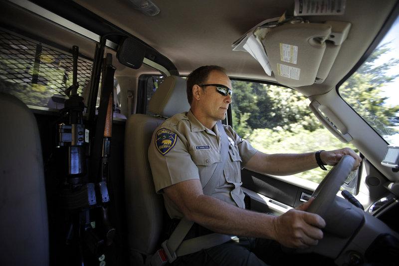 Deputy Robert Hamilton