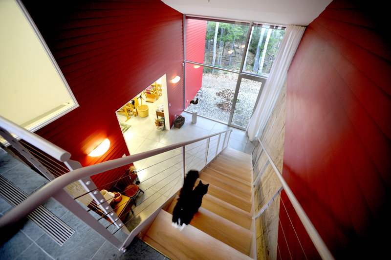 A furry resident of the Weir home descends a stairway leading to the lower level. From one aspect, the home appears to have a single story, but it is built on a slope and has full upper and lower levels.