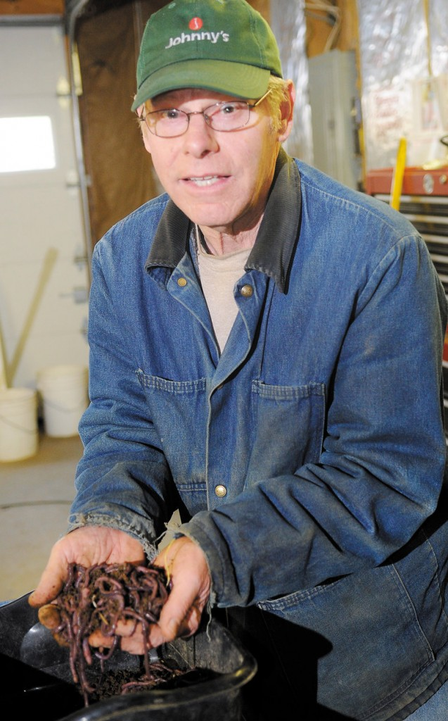"""Richard Reed of R&L Berry Farm in Readfield is Unco Industries' only commercial producer of """"cultured night walker castings"""" in Maine. """"It's clean, there's no odor, and a little bit goes a long way,"""" he said of the fertilizer."""
