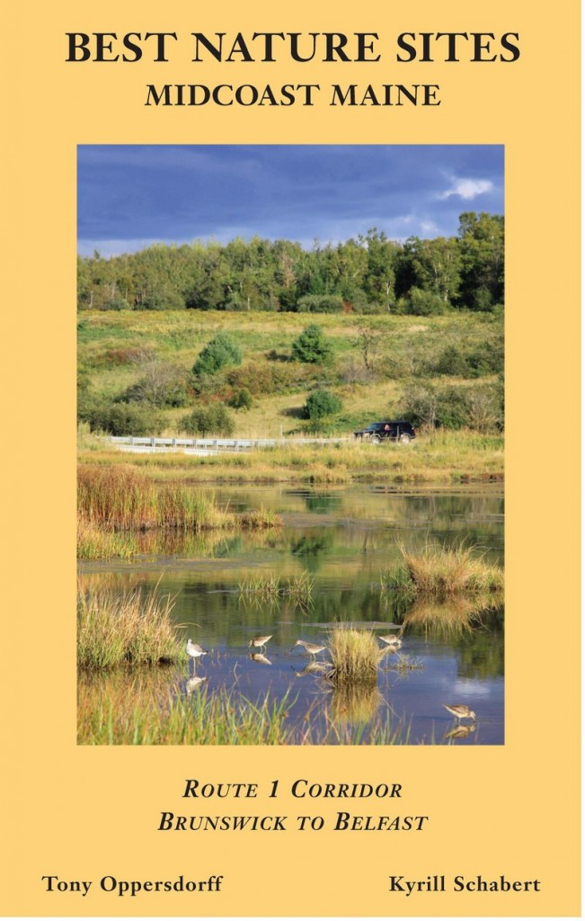 """The new book, """"Best Nature Sites: Midcoast Maine,"""" describes 40 locations to explore varied natural settings."""