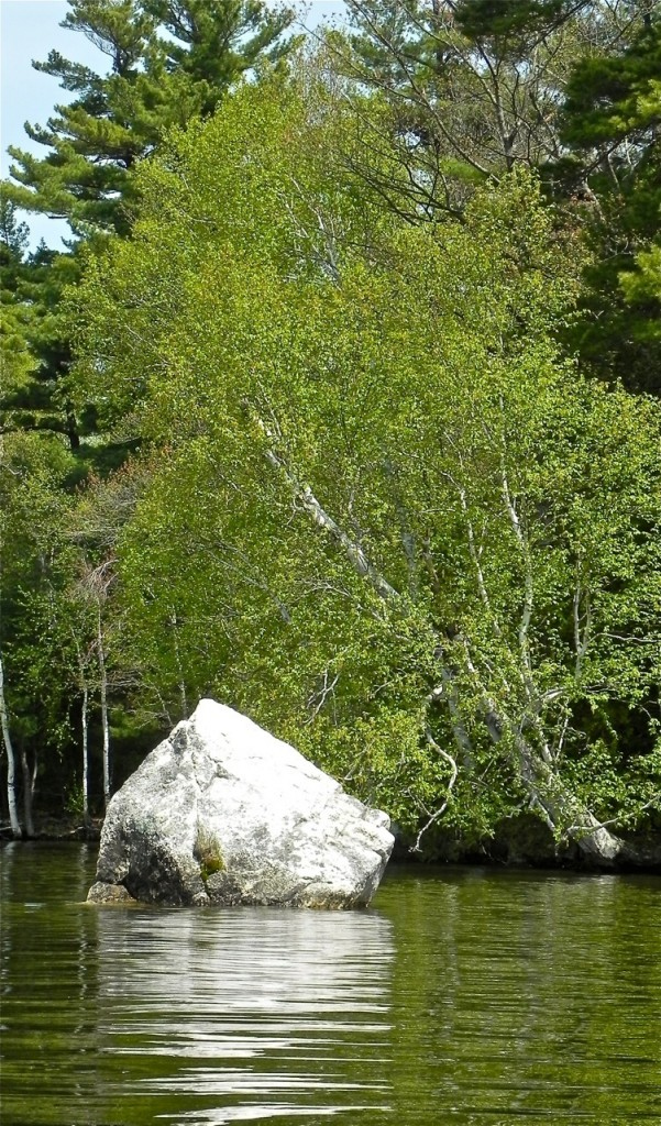 A boulder is reflected in Cobbosseecontee Lake near Hersey Island. The island is home to a huge osprey nest.