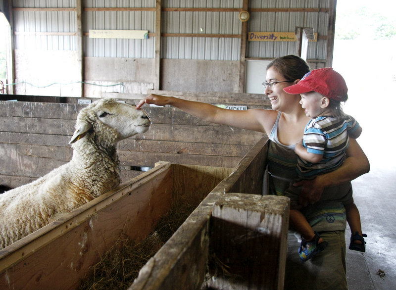 Jess Muise and her son Oliver, 2, say hello to a sheep during Open Farm Day at Wolfe's Neck Farm in Freeport on Sunday.