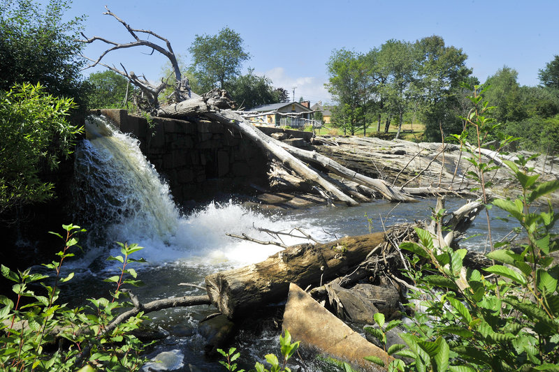Yarmouth officials would like to draw down the impoundment of the East Elm Street dam and inspect it, but it has no apparent release mechanism. Migratory fish that might find their way into the Royal River if two dams are removed include eel, alewife, shad and salmon.