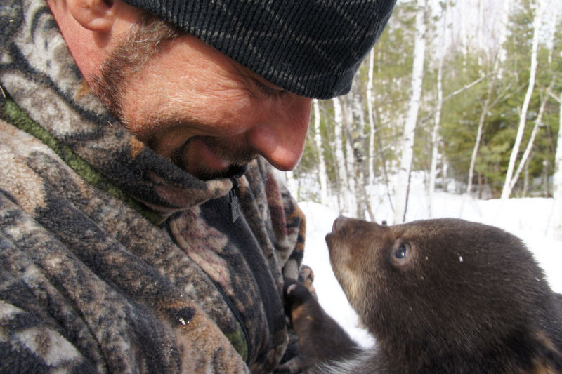 Blaine Anthony keeps an eye on a newborn black bear cub during filming for his TV show on The Sportsman Channel.