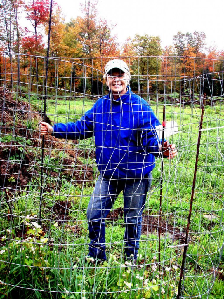 Marcia Baker, a volunteer with the Rangeley Region Guides and Sportsmen's Association, stands by a fence on one of the club's deer food plots. The fence is used to monitor to what extent the area outside the fence is being grazed.