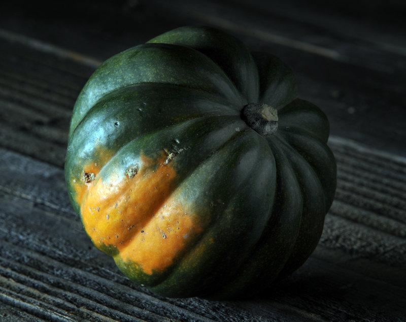 Acorn squash, a dark bluish-green squash, may be the most common winter squash outside California.