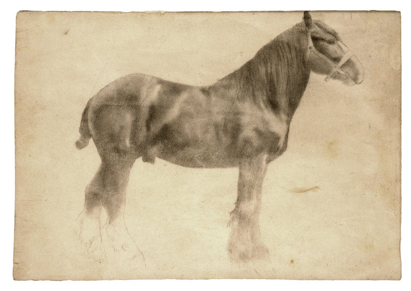 """""""Plough Horse,"""" a work in graphite by Edgar Degas, from """"Edgar Degas: The Private Impressionist,"""" opening Feb. 23 at the Portland Museum of Art."""