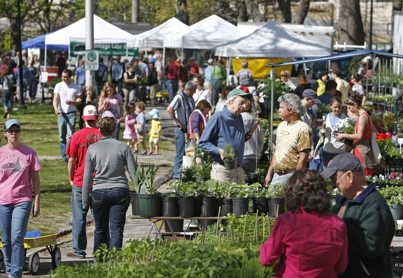 A crowd gathers at the farmers market in Deering Oaks in 2010. A USDA official says an expanded card-swipe program at the Portland and Lewiston farmers markets will help provide healthier food to food stamp recipients.