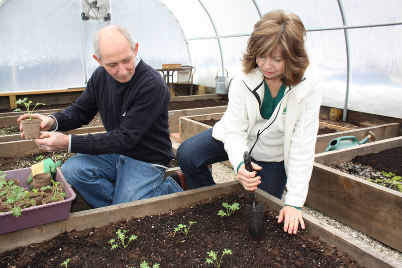 David and Marlene Tidwell plant kale in their unheated greenhouse on Feb. 29.