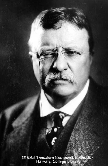 President Theodore Roosevelt typically put seven lumps of sugar in his coffee.