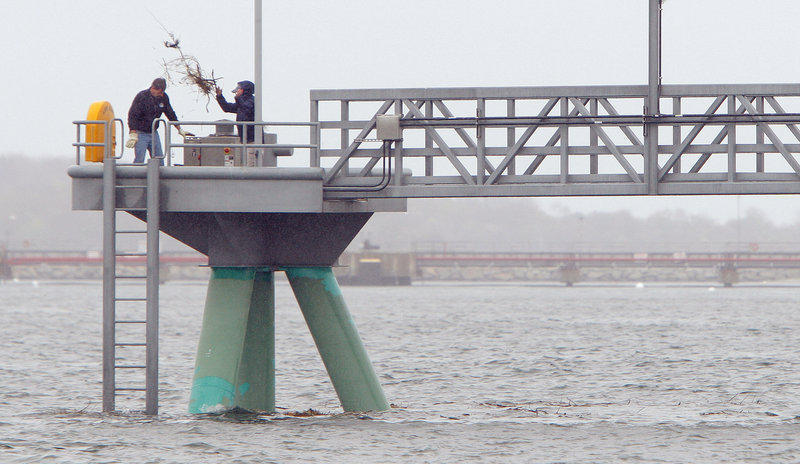 Randy Emmons, left, and Toni Doucette, municipal workers in Portland, remove an osprey nest from the end of the city's Ocean Gateway pier on Tuesday. There were no eggs in the nest.