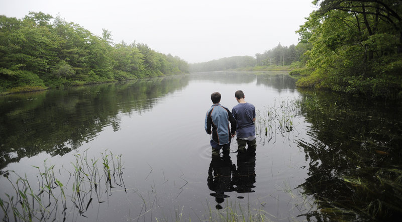 Erik Hogan, left, and Mason Beaudoin, eighth-graders at Loranger Middle School in Old Orchard Beach, wade into the water at Long Pond while doing research at Ferry Beach State Park in Saco. The two were on a field trip to do research, and got permission from the park to enter the water.