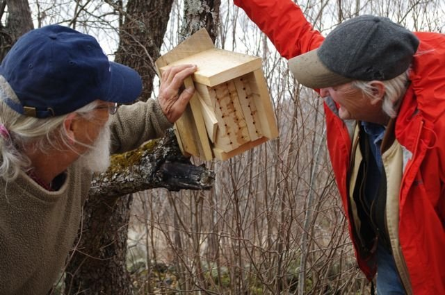 Organic blueberry grower Doug Van Horn, left, and Frank Drummond, an insect ecologist at the University of Maine at Orono, inspect a nesting box for native bees at Twitchell Hill Farm in Montville.