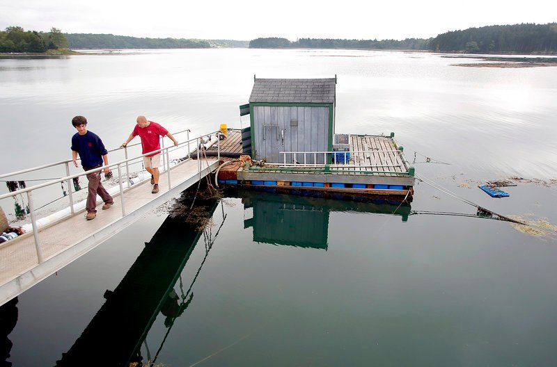 Kyle Murdock, president and CEO of Sea Hag Seafood, left, and Ryan Jackson of Rockport Mechanical Inc. walk back to the processing plant after discussing the repairs needed to the pump house on Long Cove in Tenants Harbor on Monday. The pump house provides seawater for the plant to process lobster.