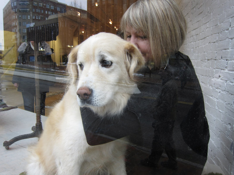 "Fairbanks gets a hug from his person, Andrea Nemitz, as he levels his love-me doggie gaze out of the window of the Black Parrot boutique on Middle Street in Portland in January. Those were happy times for ""the Bankster"" – he was fully employed charming passers-by in the Old Port, who reciprocated with visits and cookies."