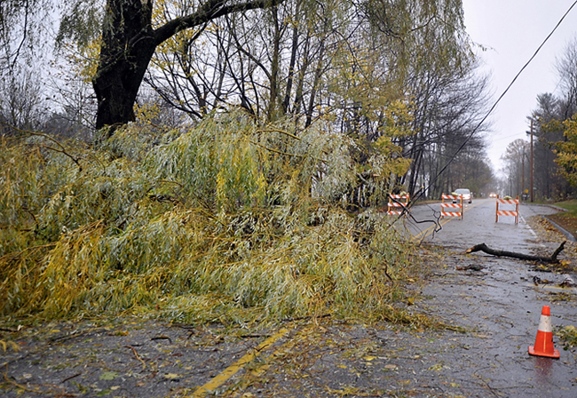 Mountain Road in Falmouth was blocked to traffic starting at about 2 a.m. on Tuesday morning when a tree fell onto the road, bringing down a power line in the process. David and Laurie Janes say they heard the crash while in bed in their Falmouth home.