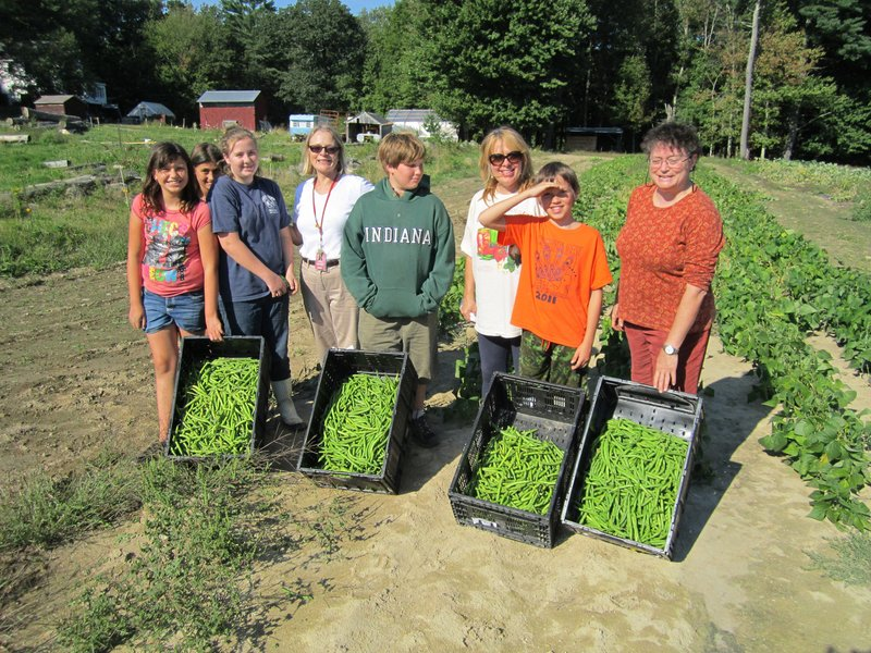 Wells Junior High School student volunteers and staffers pose with green beans that they picked recently at Spiller Farm in Wells. Pictured from left are Samantha Jones, Jessica Licardo, Abigail Bourque, Beth Cilluffo, Ethan Huber-Young, Mary Rand, Caden Gibson and Kerry Georgitis.