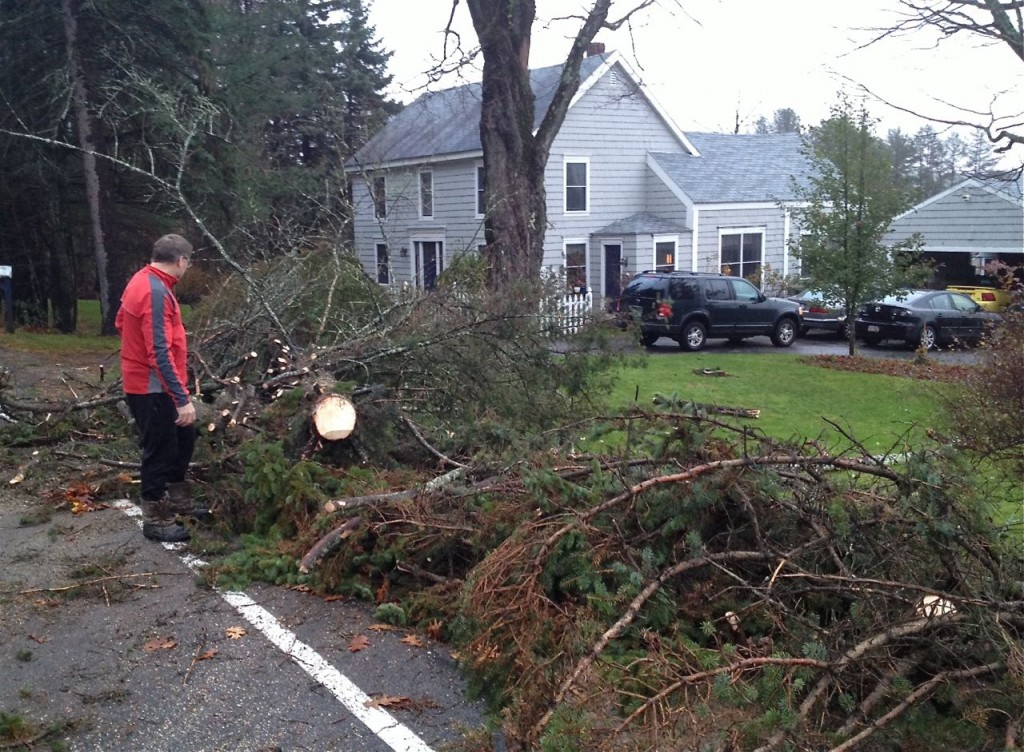 Stephen Graffam, who lives on Methodist Road in Westbrook, checks out a tree that fell about 3 a.m. and blocked the road. He said two young men who wanted to get to work pulled out two chainsaws and cut it up about 5 a.m.