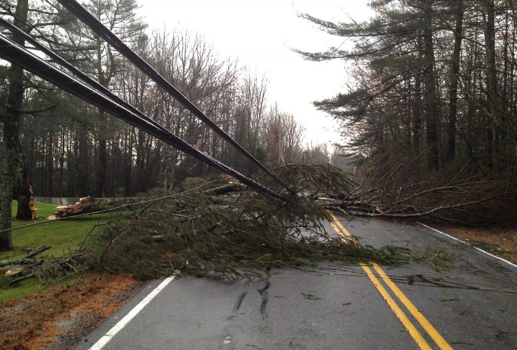 A downed tree and power line on Methodist Road in Westbrook.