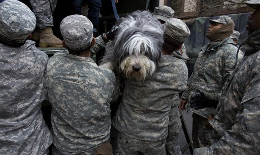 FILE - In this Oct. 31, 2012, file photo, a dog named Shaggy is handed from a National Guard truck to National Guard personnel after the dog and his owner left a flooded building in Hoboken, N.J., in the wake of superstorm Sandy. The storm drove New York and New Jersey residents from their homes, destroyed belongings and forced them to find shelter for themselves - and for their pets, said owners, who recounted tales of a dog swimming through flooded streets and extra food left behind for a tarantula no one was willing to take in. (AP Photo/Craig Ruttle, File) hurricane sandy; hurricane;