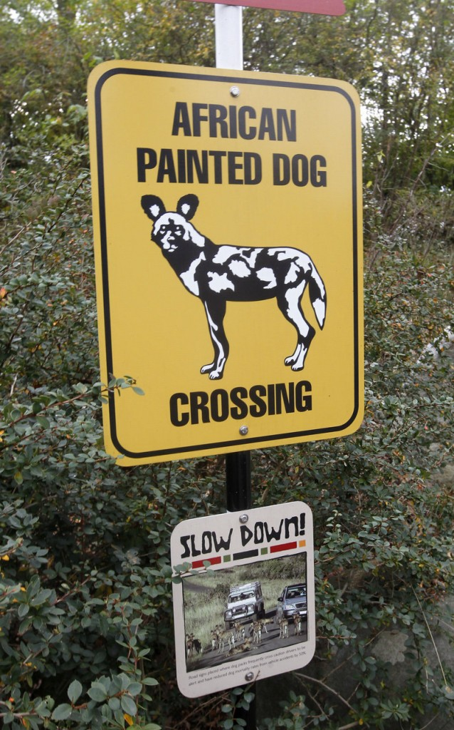 A sign at the Pittsburgh Zoo depicts an African painted dog, the species that killed a toddler who fell into their enclosure Sunday.