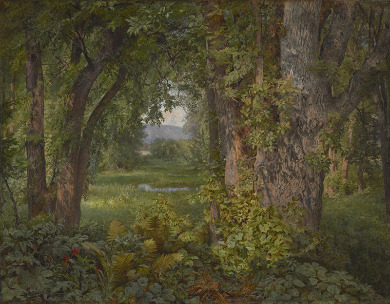 """""""In the Woods,"""" 1860 oil on canvas by William Trost Richards (American, 1833-1905), from """"We Never See Anything Clearly: John Ruskin and Landscape Painting,"""" through Dec. 23 at the Bowdoin College Museum of Art."""