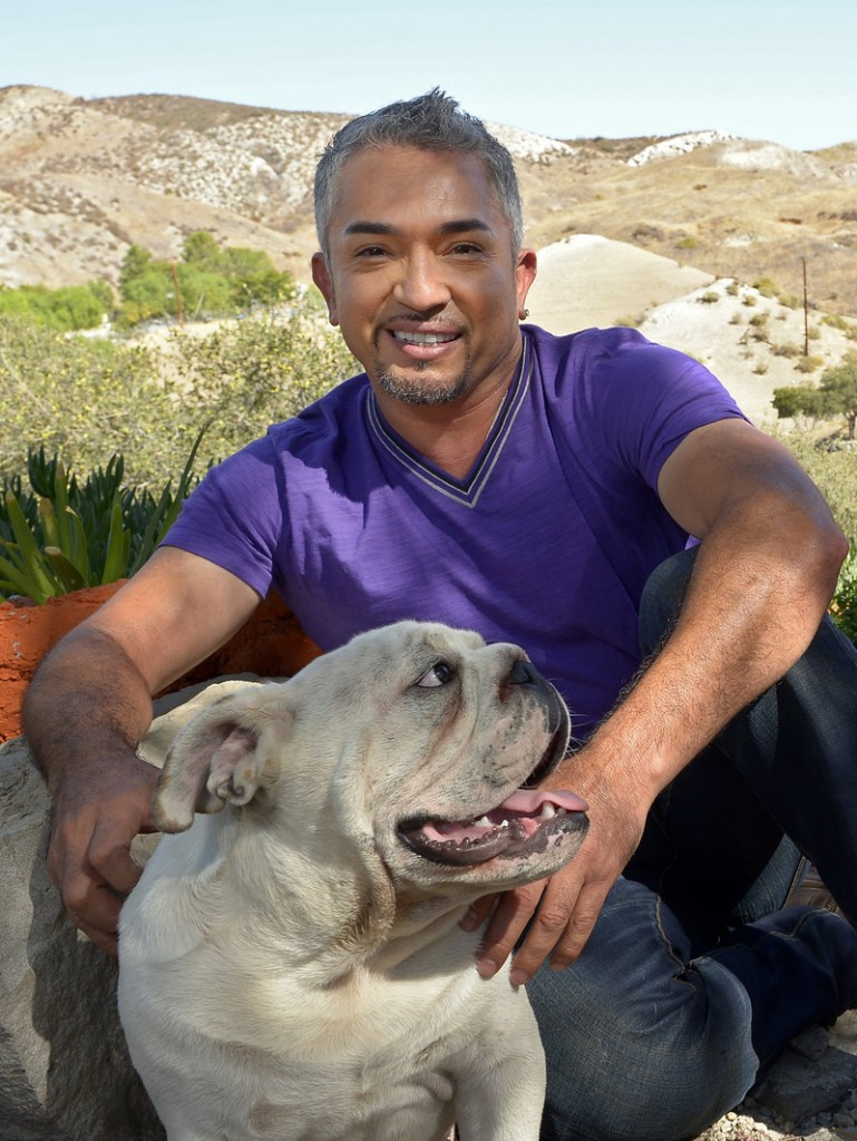 Cesar Millan shows his English bulldog George at his Dog Psychology Center in Santa Clarita, Calif., last month.