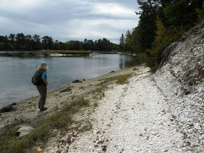 Glidden Midden offers one of the largest oyster shell heaps remaining in the eastern U.S., accumulated over several thousand years by Native Americans.