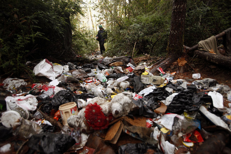 Aaron Pole, a wildlife technician with the Hoopa Tribal Forestry, walks in the woods where marijuana growers left piles of trash after vacating the area on the Hoopa Indian Reservation in California.
