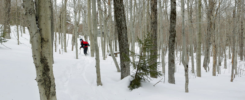 Ski Patrol chief John McElrath, only on a snowboard instead of skis, ventures down Black Mountain's new expert-only Moxie backcountry trail, accessible by the summit lift by hiking or post-holing, depending on individual preference.