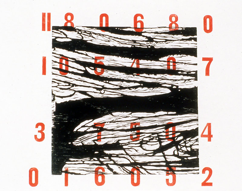 """""""Tyranny of Numbers"""" by Dorothy Schwartz."""