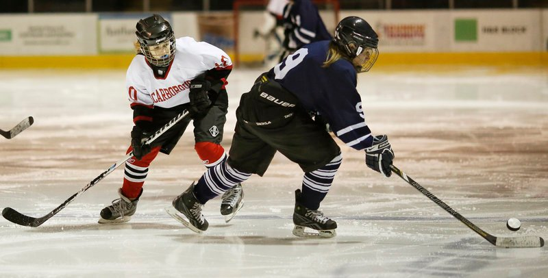 Sam Nablo of Portland/Deering skates away from Rachael Wallace of Scarborough during the third period of their game at the Civic Center.