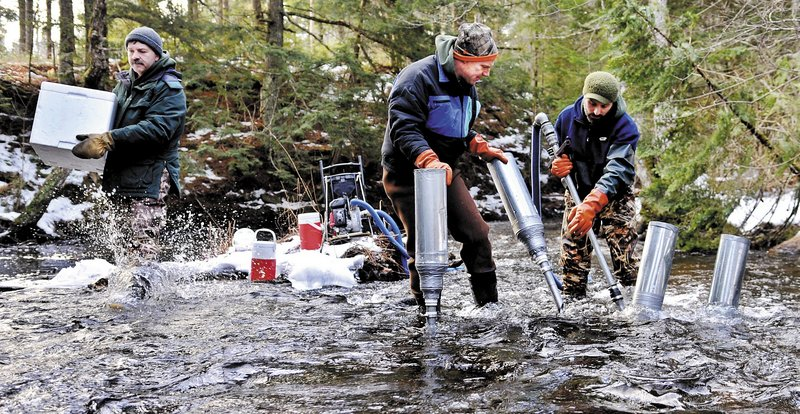 Maine Department of Marine Resources biologist Jason Overlock, right, drills a nest, or redd, as Jason Bartlett, center, places a funnel for Paul Christman, left, to insert Atlantic salmon eggs into last week in the bed of the Sheepscot River in Palermo.