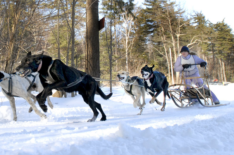 Dogsled races, ice skating, a bonfire and more are on tap Friday to Sunday at Bridgton's Mushers Bowl Winter Carnival.
