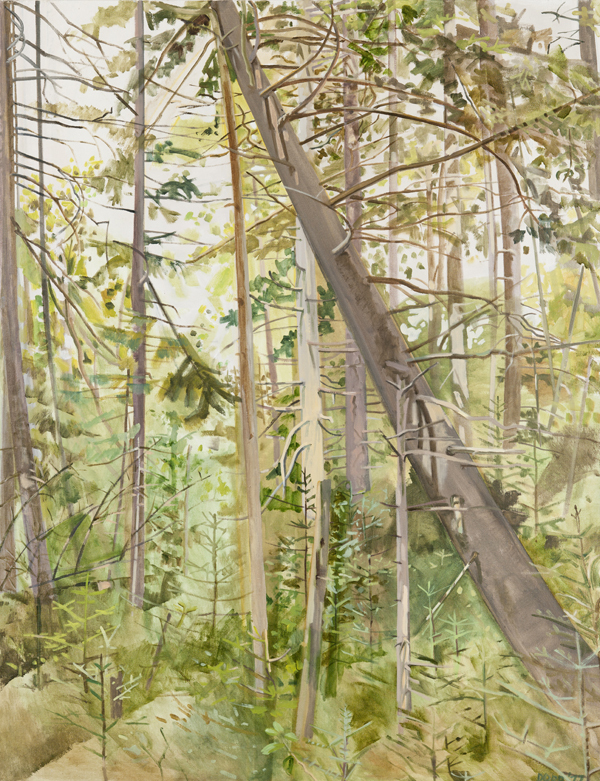 """""""Woods with Falling Tree,"""" 1977."""