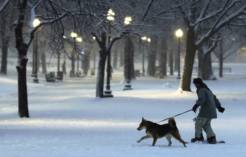 A dog pulls a snowboarder through the Boston Common in Boston, Friday, Feb. 8, 2013. Mass. Gov. Deval Patrick declared a state of emergency Friday and banned travel on roads as of 4 p.m. as a blizzard that could bring nearly 3 feet of snow to the region began to intensify. As the storm gains strength, it will bring