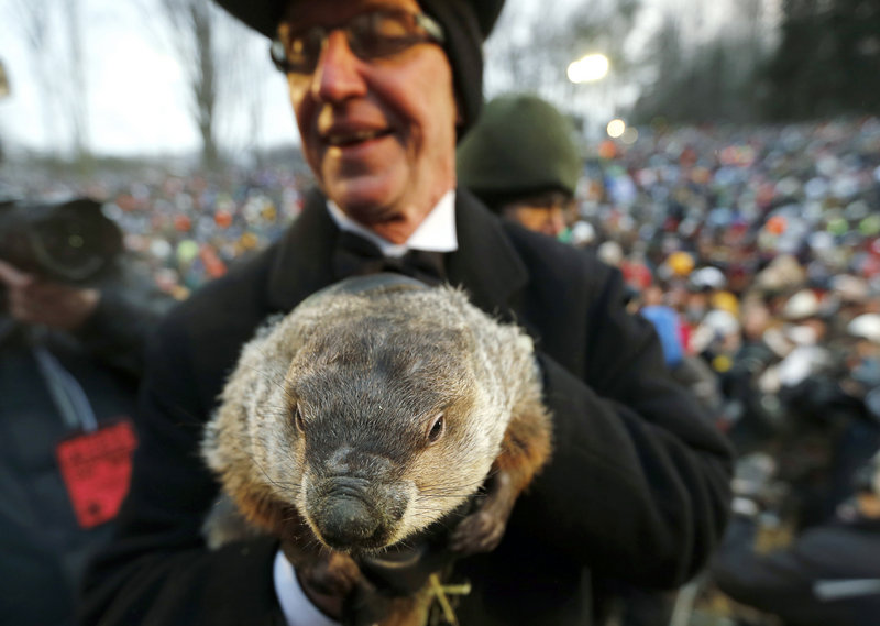 Groundhog Club co-handler Ron Ploucha holds weather-predicting groundhog Punxsutawney Phil after the club said Phil did not see his shadow and there will be an early spring.