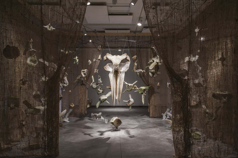 """Installation view of """"Dan DenDanto and Frank DenDanto: BUMP,"""" on view through April 7 at the Institute of Contemporary Art at Maine College of Art in Portland. The show consists of bones from three different whales that most likely died from collisions with ship propellers."""