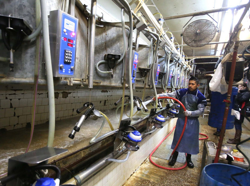 Worker Jorge Santiago washes down milking stalls between herds at Joe Wright's dairy farm in Zolfo Springs, Fla. Wright says he couldn't run his farm without immigrant labor.