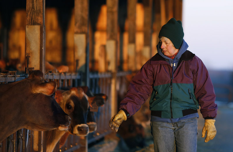 Fifth-generation dairy farmer Libby Bleakney runs Highland Farms in Cornish with her family.