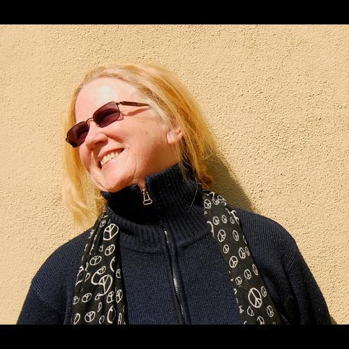 Singer-songwriter Holly Near performs at Jonathan's in Ogunquit on Friday.