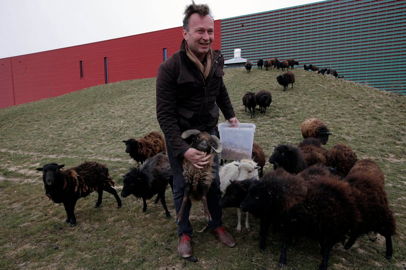 "Sylvain Girard, owner of ""Ecomouton,"" shows his flock used to graze the lawns around a truck warehouse at Evry, south of Paris. Paris is enlisting the help of a small flock of sheep to keep the city's grass trim."