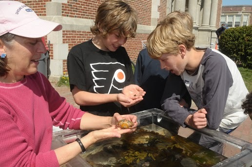 A firsthand look at aquatic life at the 2012 Green Neighbor Family Festival, following the Urban Runoff 5K, at Deering High School in Portland. This year's race and festival take place Saturday.