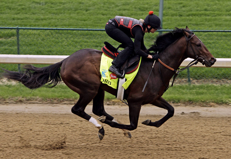 Orb, above, is a 7-2 favorite to win the Kentucky Derby. The horse, trained by the respected Shug McGaughey, comes into Saturday's Derby on a four-race winning streak.