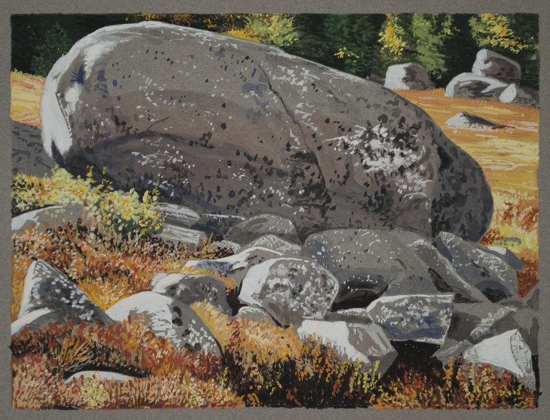 """Big Erratic with Lichen, Brooksville"" by John Woolsey"