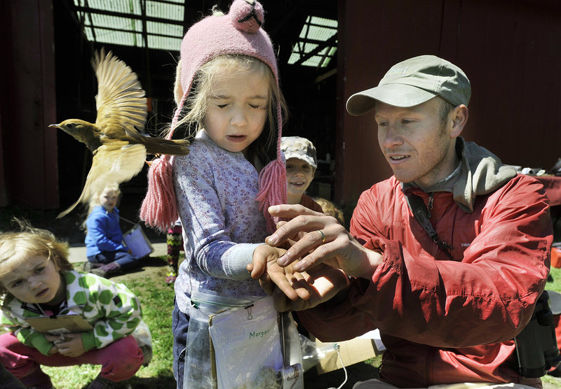 Biologist Patrick Keenan helps Morgan Earls, a Waynflete student, release a veery after banding it Tuesday at River Point in West Falmouth.
