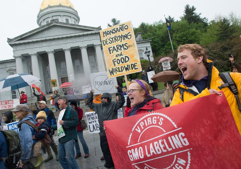 Protesters rally against Monsanto in Montpelier, Vt., on Saturday, as marches against the company were held in more than 250 cities around the world. Critics say genetically modified organisms can lead to serious health conditions and harm the environment.